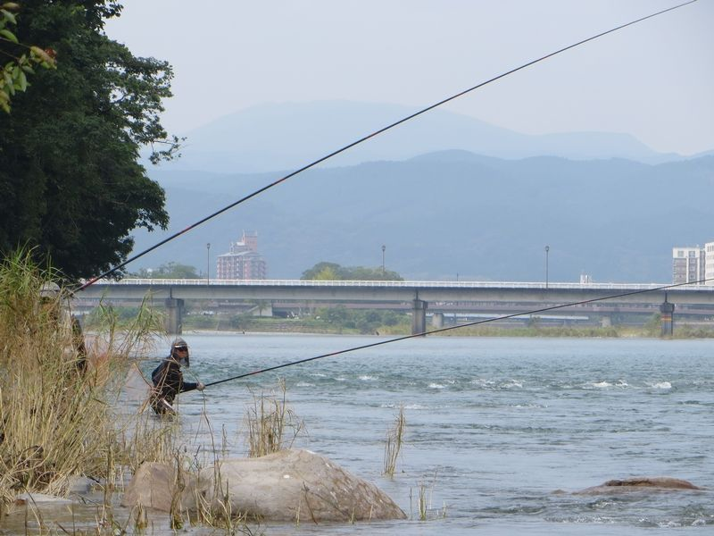 球磨川_鮎釣り_木山の瀬1