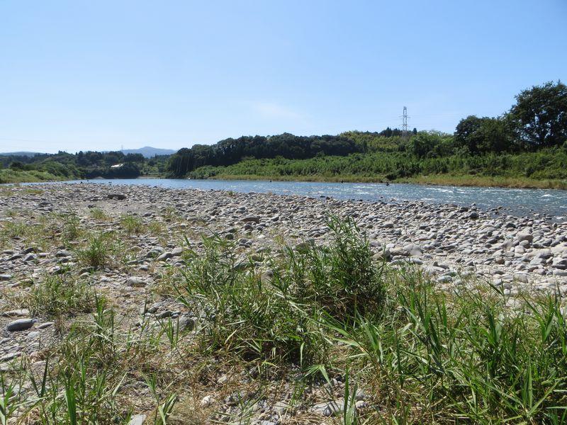 球磨川_鮎釣り_戦の瀬2